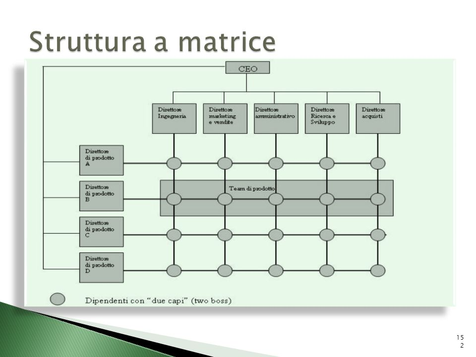 Struttura a matrice