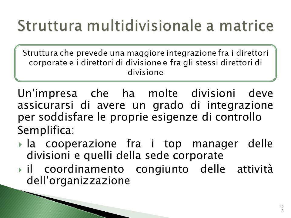 Struttura multidivisionale a matrice