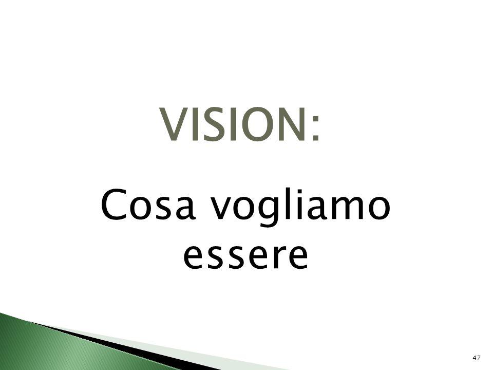 VISION: Cosa vogliamo essere