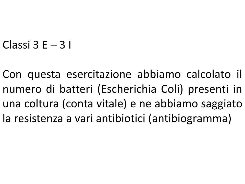 Classi 3 E – 3 I