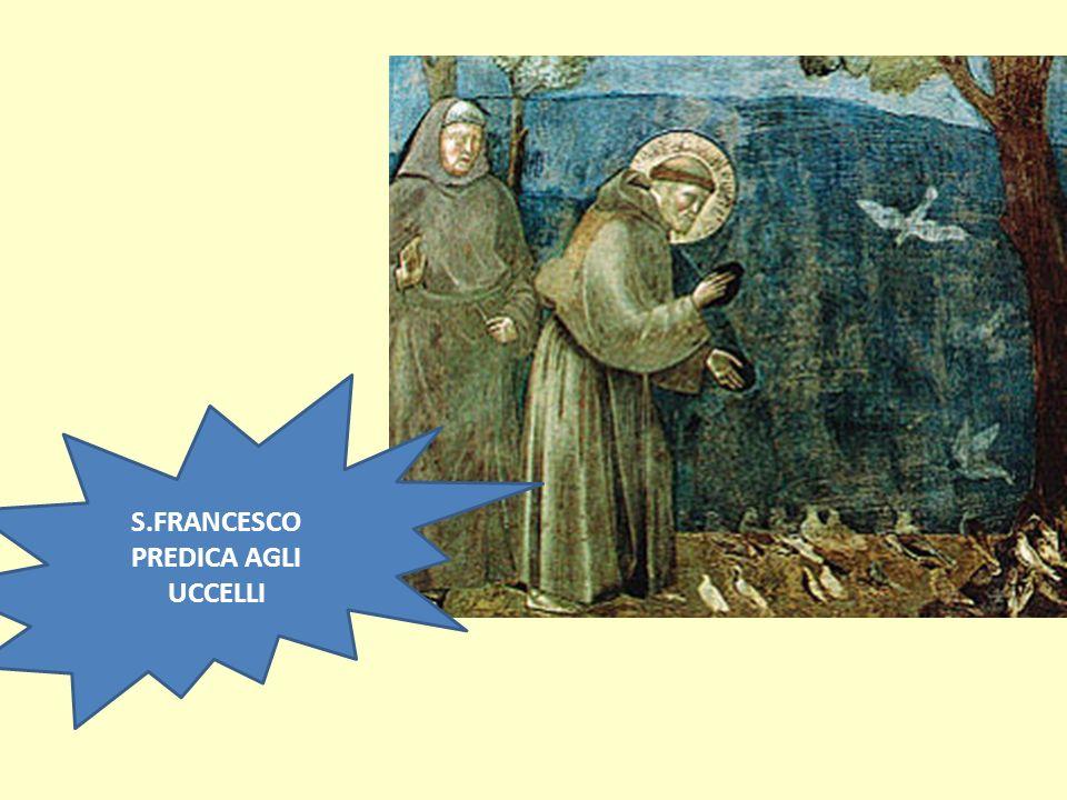 S.FRANCESCO PREDICA AGLI UCCELLI