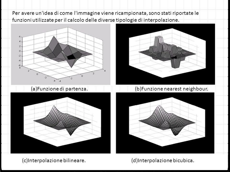 Per avere un idea di come l immagine viene ricampionata, sono stati riportate le funzioni utilizzate per il calcolo delle diverse tipologie di interpolazione.