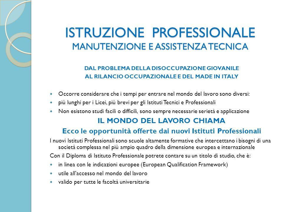 ISTRUZIONE PROFESSIONALE MANUTENZIONE E ASSISTENZA TECNICA