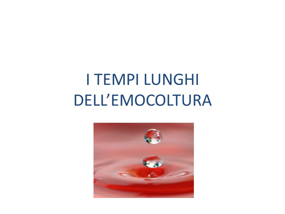 I TEMPI LUNGHI DELL'EMOCOLTURA