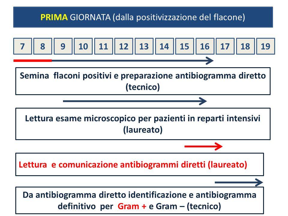 Semina flaconi positivi e preparazione antibiogramma diretto (tecnico)