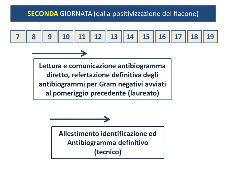 Allestimento identificazione ed Antibiogramma definitivo (tecnico)