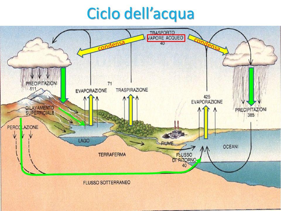 Ciclo dell'acqua condensa condensa