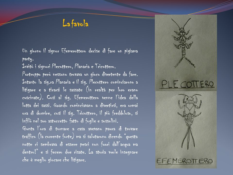 La favola Un giorno il signor Efemerottero decise di fare un pigiama party. Invitò i signori Plecottero, Planaria e Tricottero.