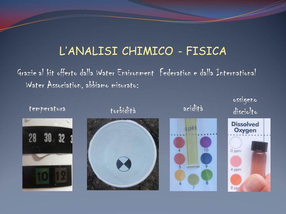 L'ANALISI CHIMICO - FISICA