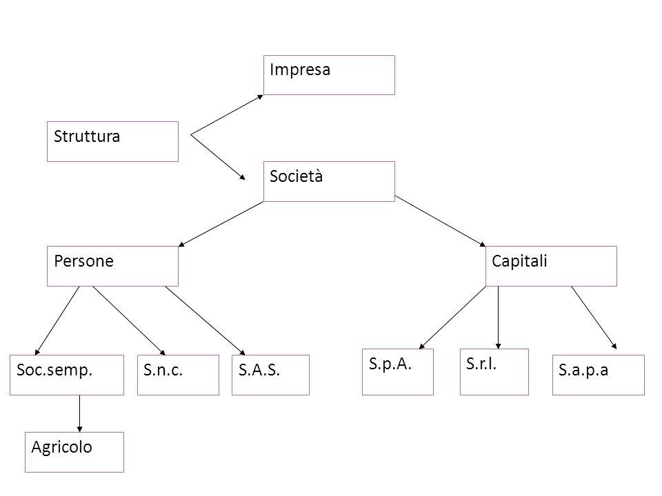 Struttura Impresa S.n.c. Persone S.A.S. Soc.semp. Capitali S.a.p.a S.p.A. S.r.l. Agricolo Società