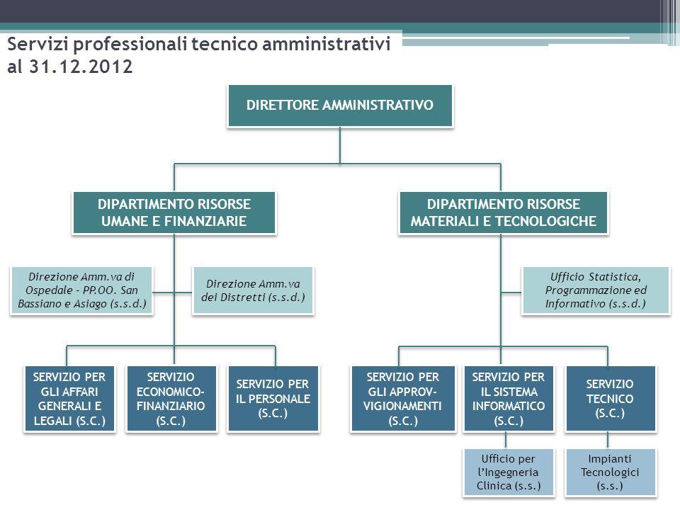Servizi professionali tecnico amministrativi al 31.12.2012