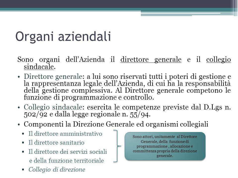 Organi aziendali Sono organi dell'Azienda il direttore generale e il collegio sindacale.