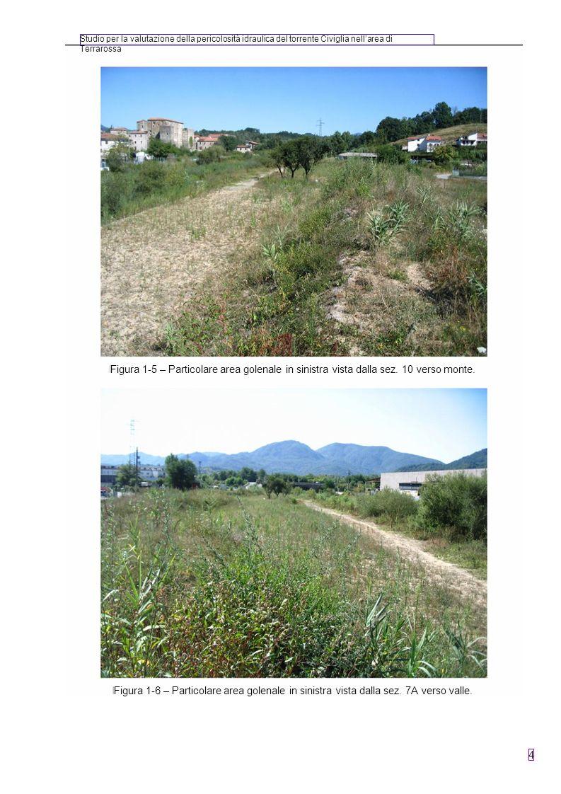 Studio per la valutazione della pericolosità idraulica del torrente Civiglia nell'area di Terrarossa