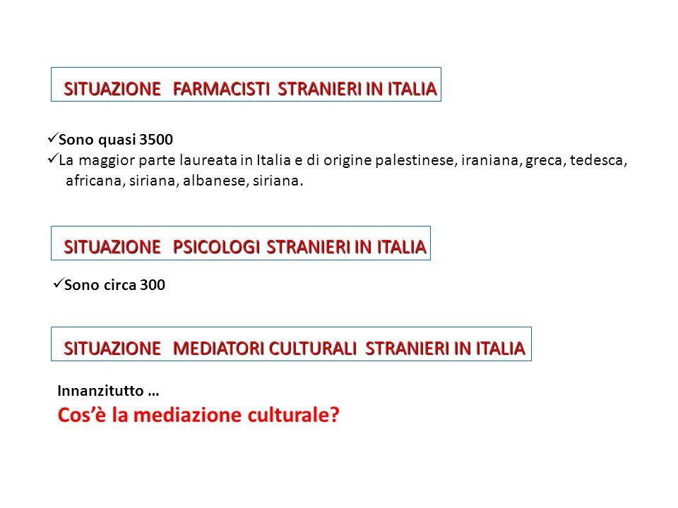 Cos'è la mediazione culturale