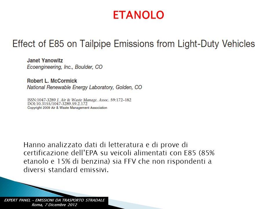 EXPERT PANEL – EMISSIONI DA TRASPORTO STRADALE Roma, 7 Dicembre 2012