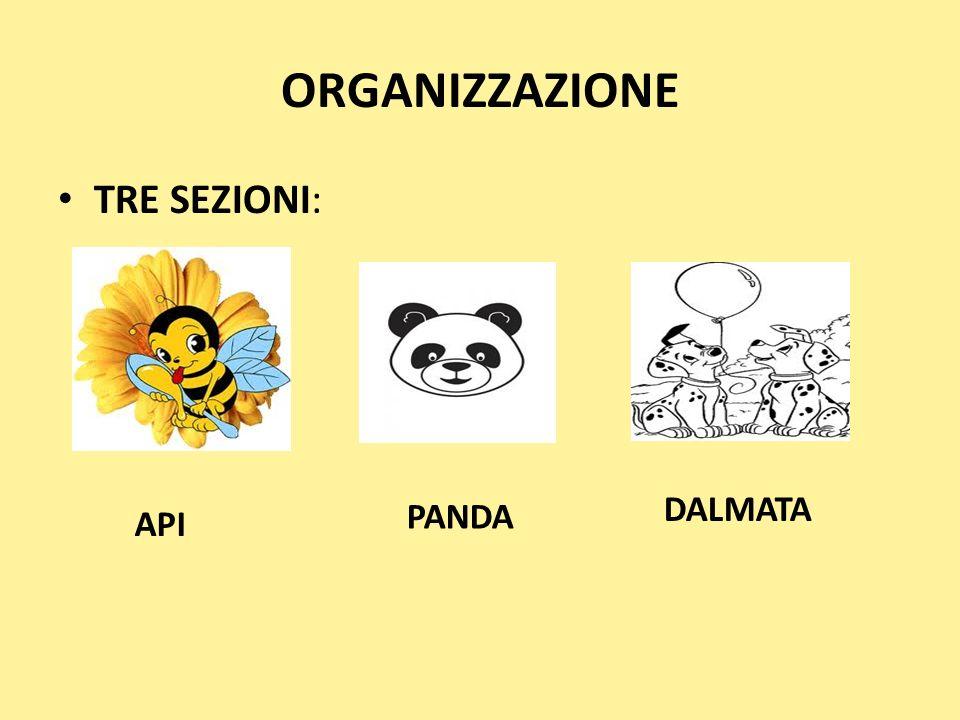 ORGANIZZAZIONE TRE SEZIONI: DALMATA PANDA API