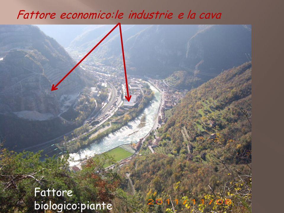 Fattore economico:le industrie e la cava