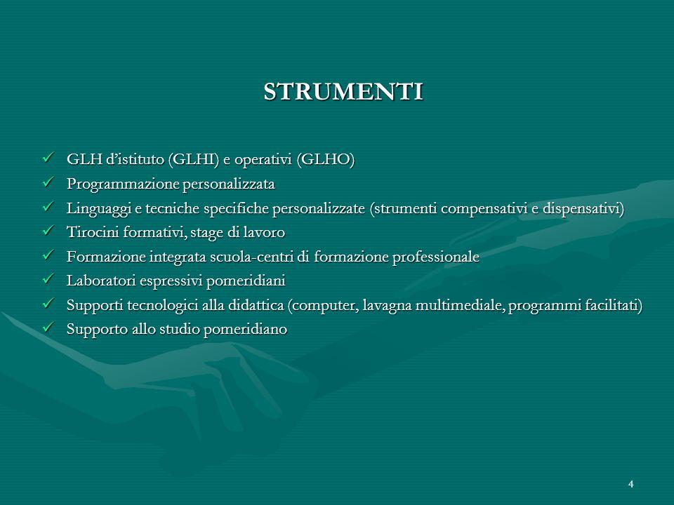 STRUMENTI GLH d'istituto (GLHI) e operativi (GLHO)