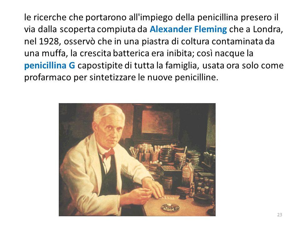 le ricerche che portarono all impiego della penicillina presero il via dalla scoperta compiuta da Alexander Fleming che a Londra, nel 1928, osservò che in una piastra di coltura contaminata da una muffa, la crescita batterica era inibita; così nacque la penicillina G capostipite di tutta la famiglia, usata ora solo come profarmaco per sintetizzare le nuove penicilline.