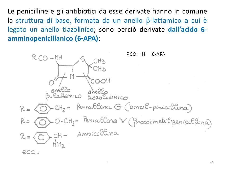 Le penicilline e gli antibiotici da esse derivate hanno in comune la struttura di base, formata da un anello b-lattamico a cui è legato un anello tiazolinico; sono perciò derivate dall'acido 6-amminopenicillanico (6-APA):