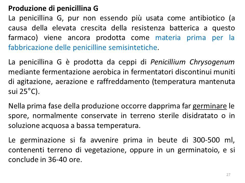 Produzione di penicillina G