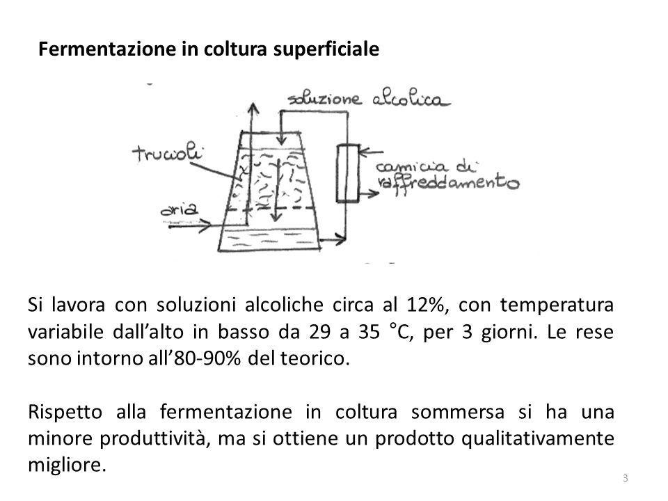 Fermentazione in coltura superficiale