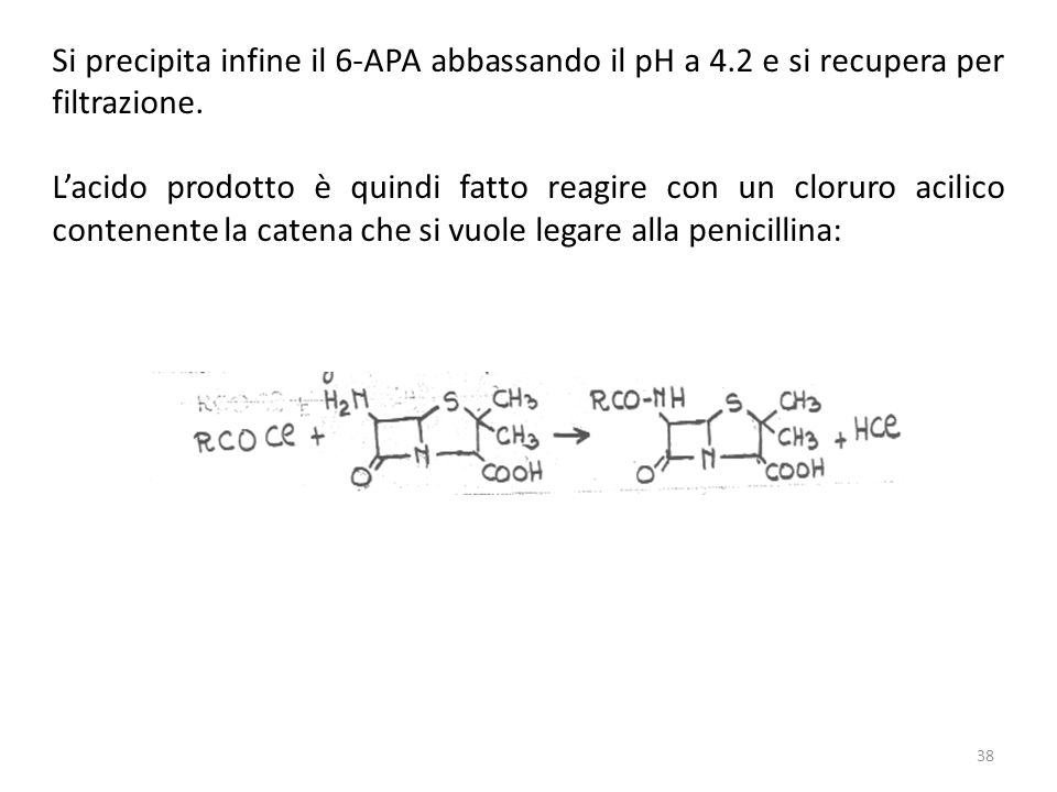Si precipita infine il 6-APA abbassando il pH a 4