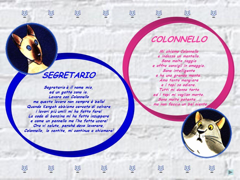 COLONNELLO SEGRETARIO