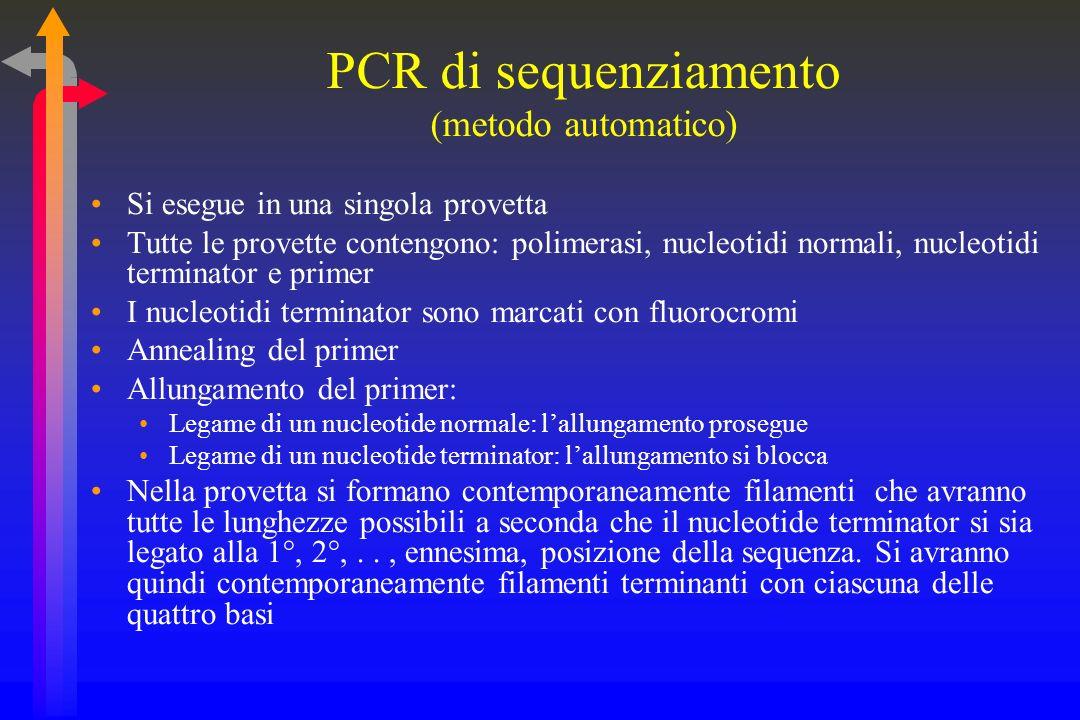 PCR di sequenziamento (metodo automatico)