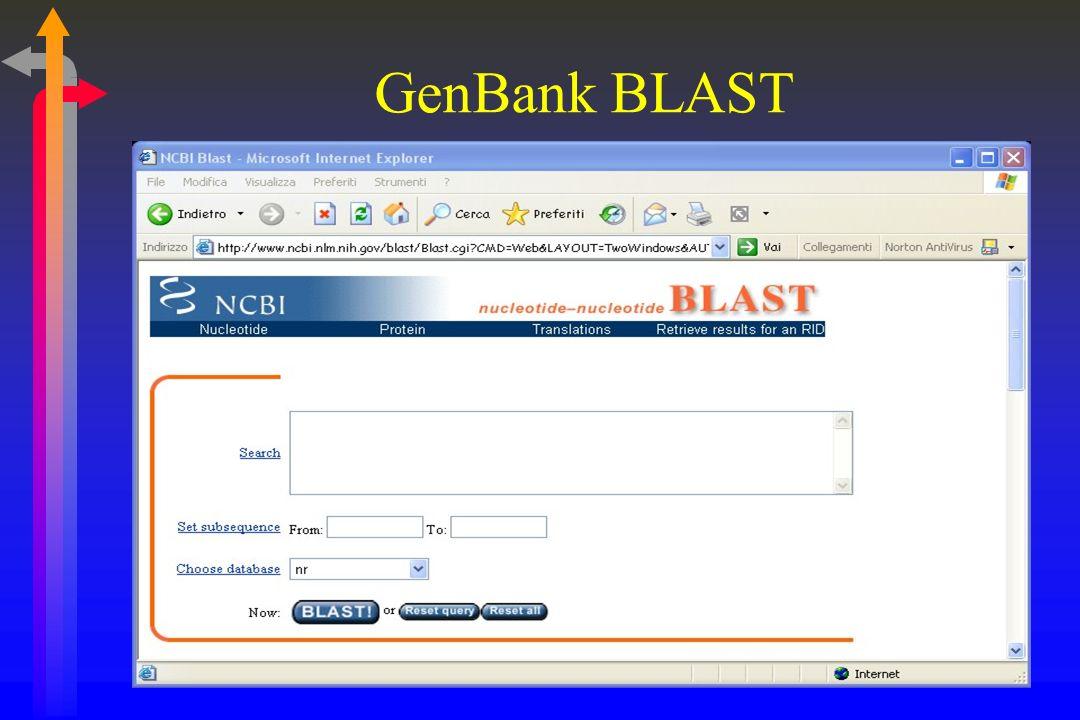 GenBank BLAST