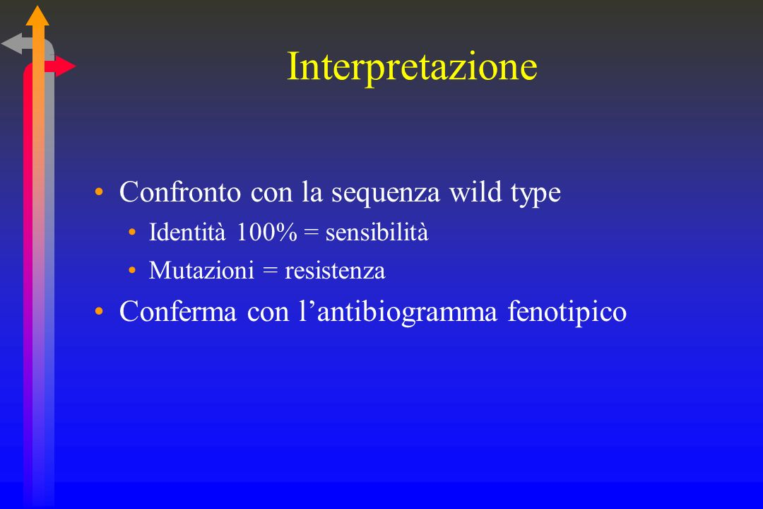 Interpretazione Confronto con la sequenza wild type