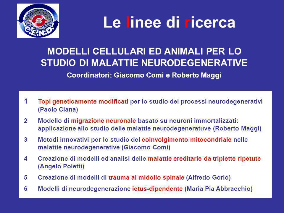 Coordinatori: Giacomo Comi e Roberto Maggi