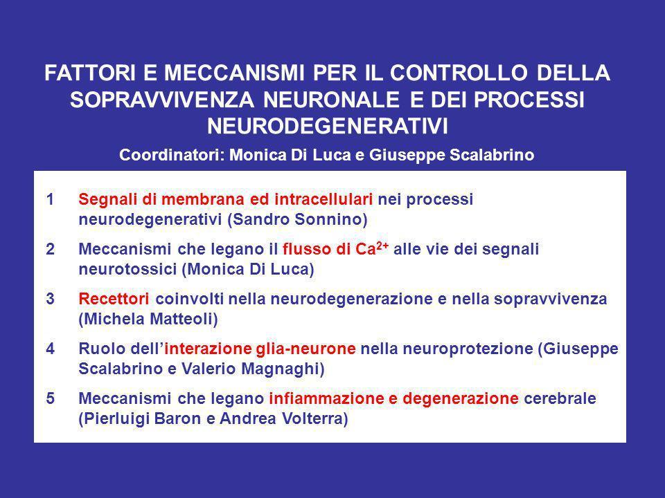 Coordinatori: Monica Di Luca e Giuseppe Scalabrino
