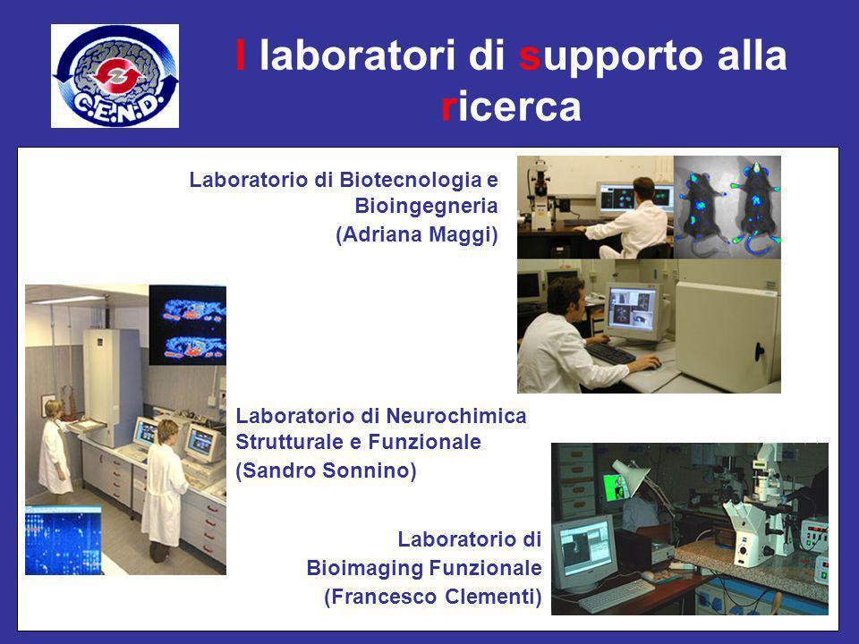 I laboratori di supporto alla ricerca