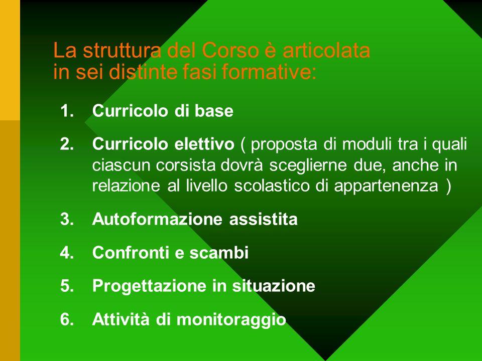 La struttura del Corso è articolata in sei distinte fasi formative: