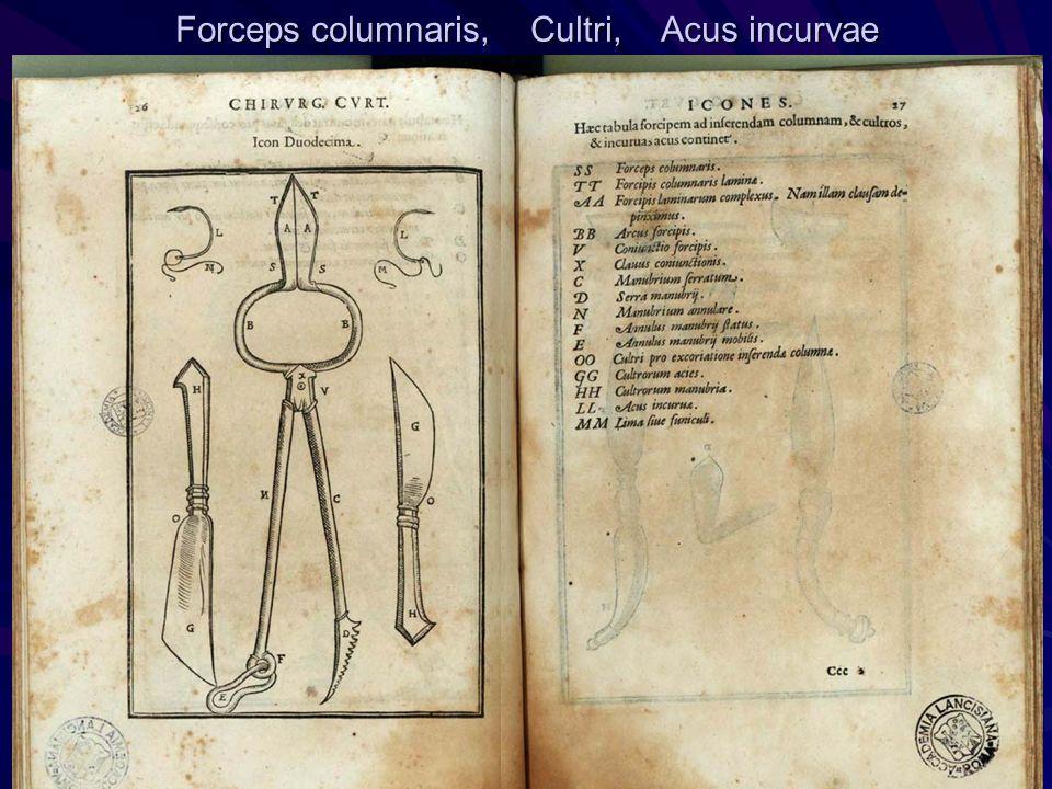 Forceps columnaris, Cultri, Acus incurvae