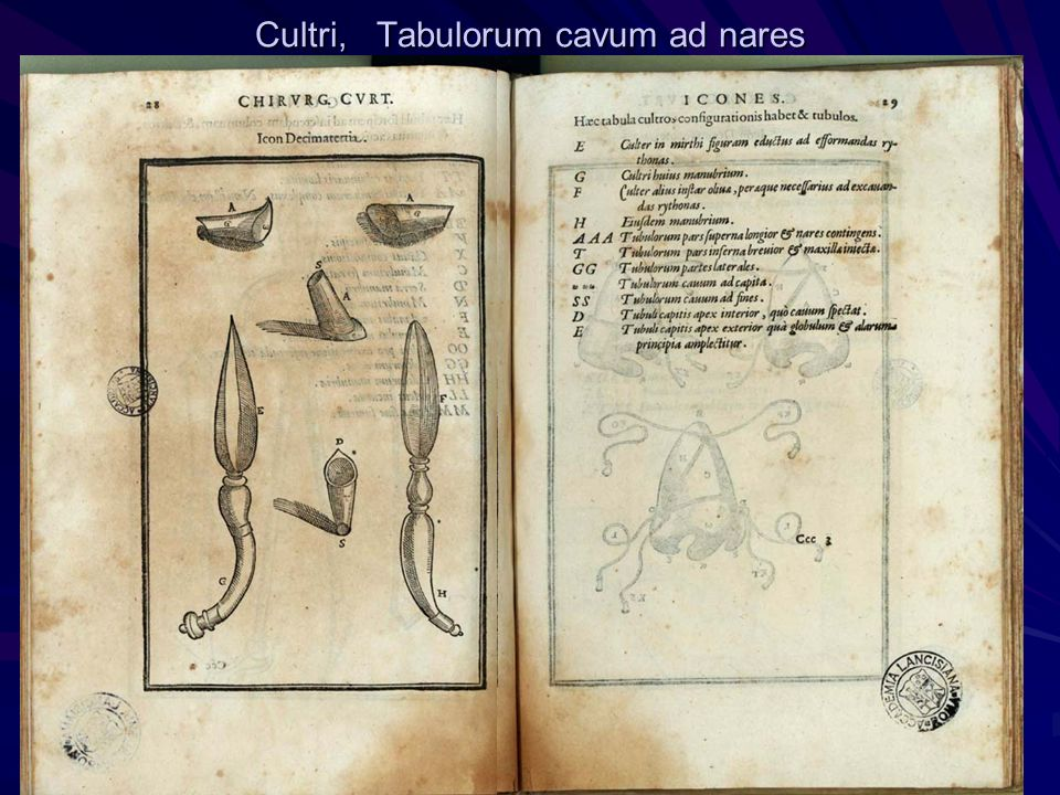 Cultri, Tabulorum cavum ad nares