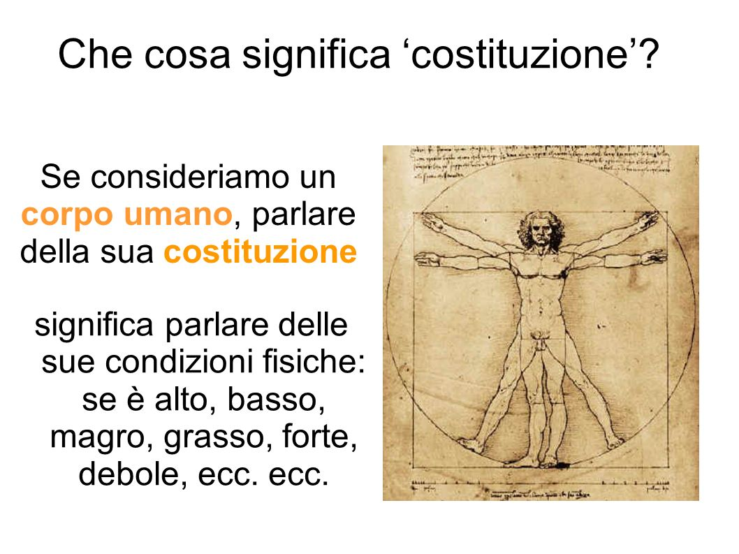 Che cosa significa 'costituzione'