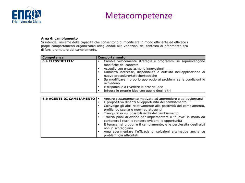 Metacompetenze