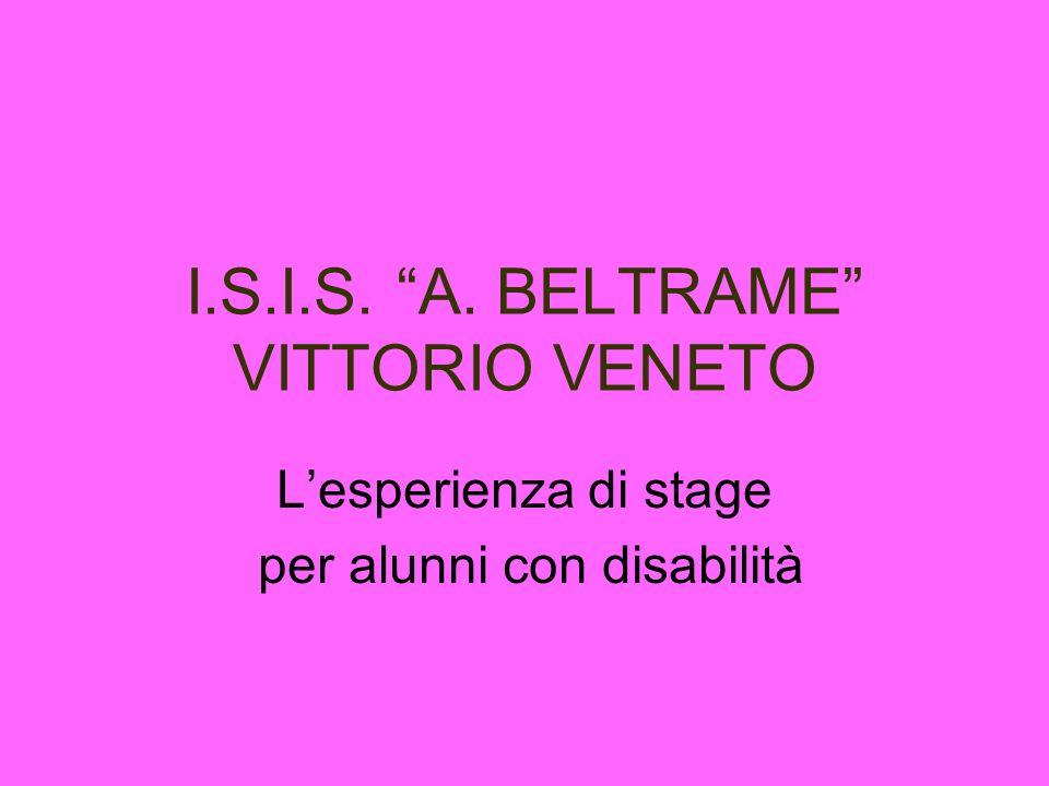 I.S.I.S. A. BELTRAME VITTORIO VENETO