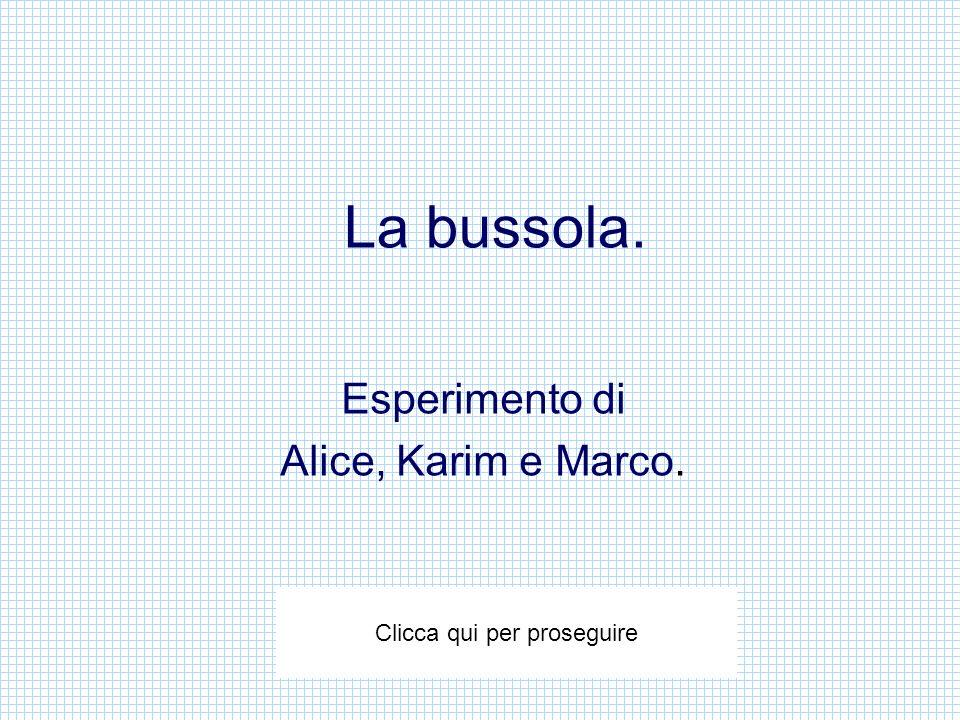 Esperimento di Alice, Karim e Marco.