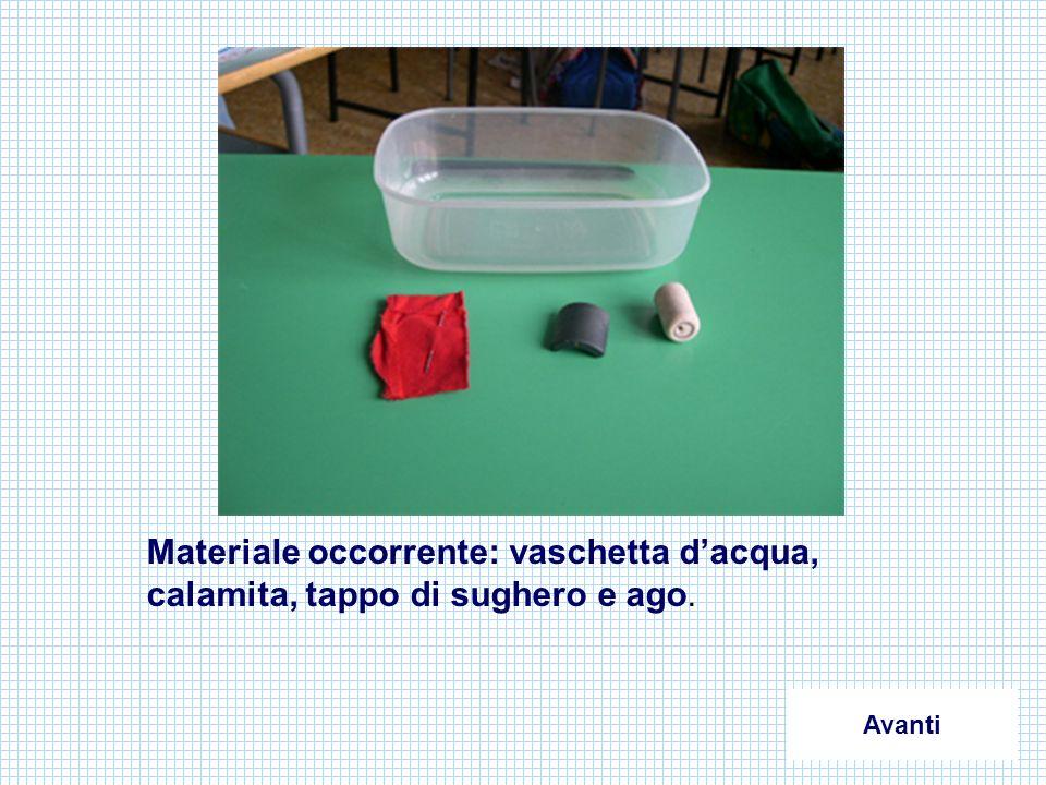 Materiale occorrente: vaschetta d'acqua, calamita, tappo di sughero e ago.