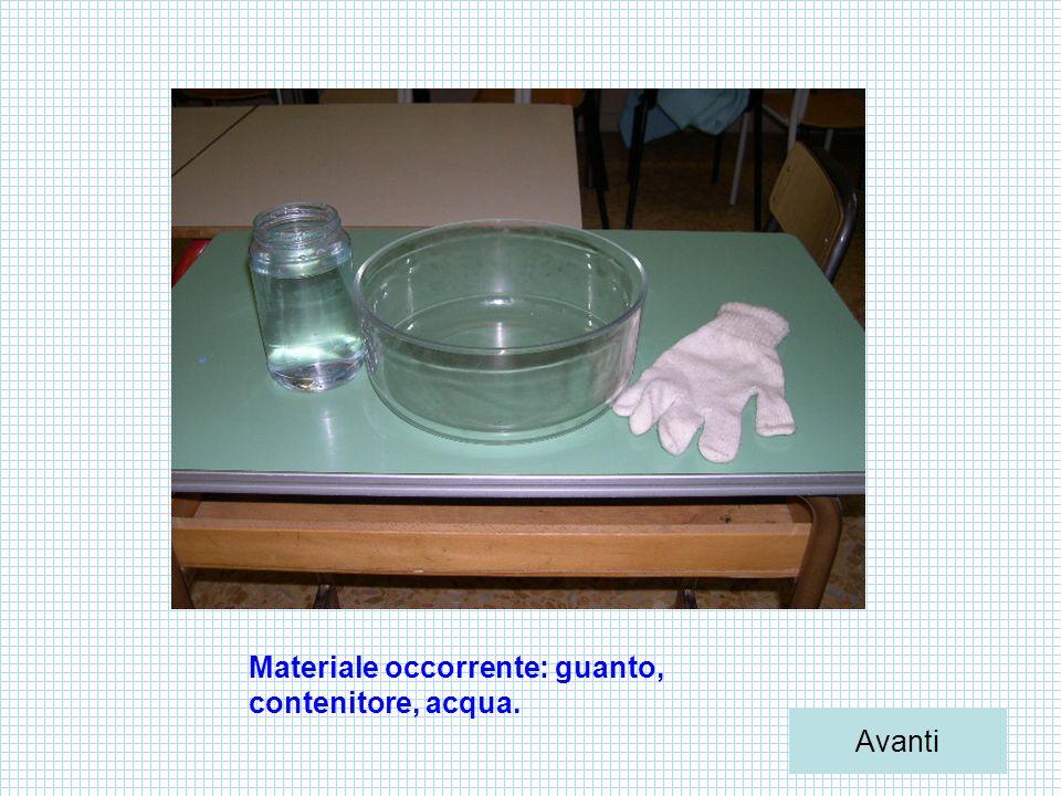 Materiale occorrente: guanto, contenitore, acqua.