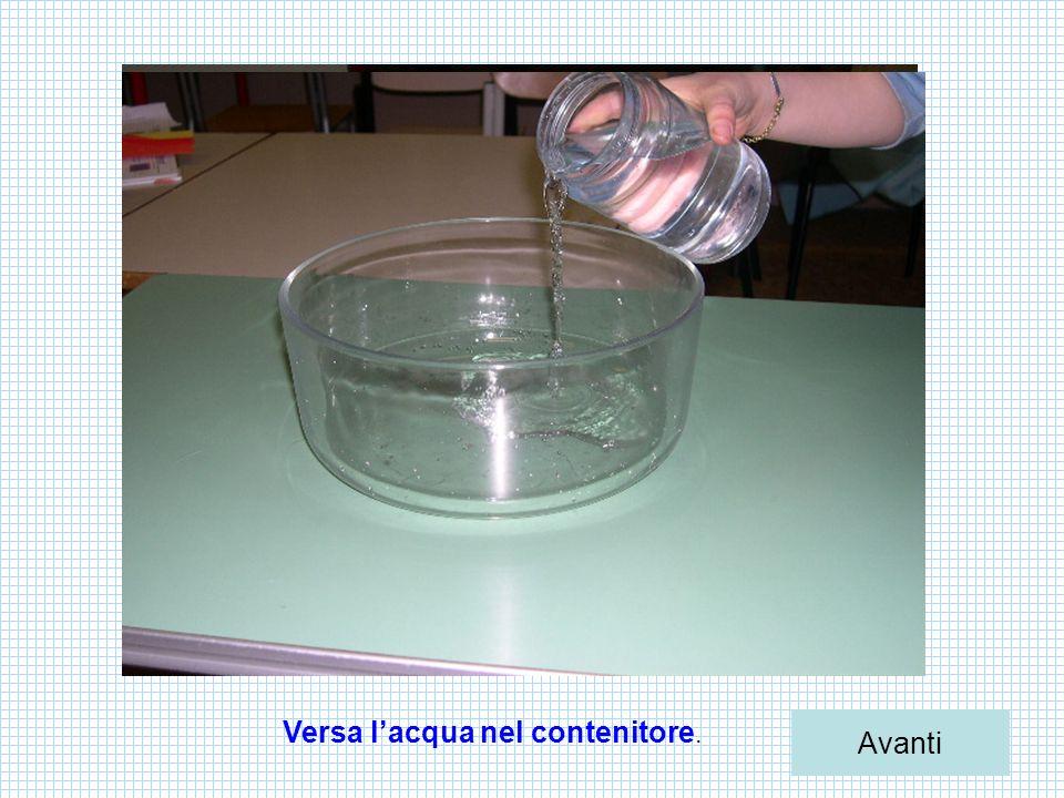 Versa l'acqua nel contenitore.