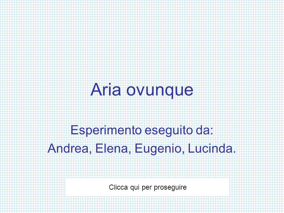 Esperimento eseguito da: Andrea, Elena, Eugenio, Lucinda.
