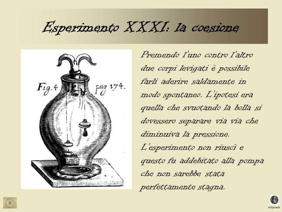 Esperimento XXXI: la coesione