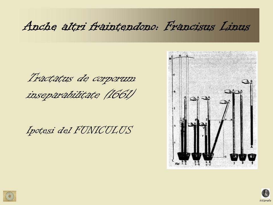 Anche altri fraintendono: Francisus Linus