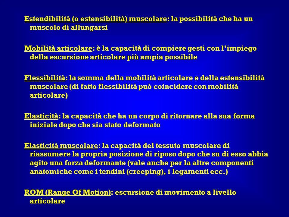 Estendibilità (o estensibilità) muscolare: la possibilità che ha un muscolo di allungarsi
