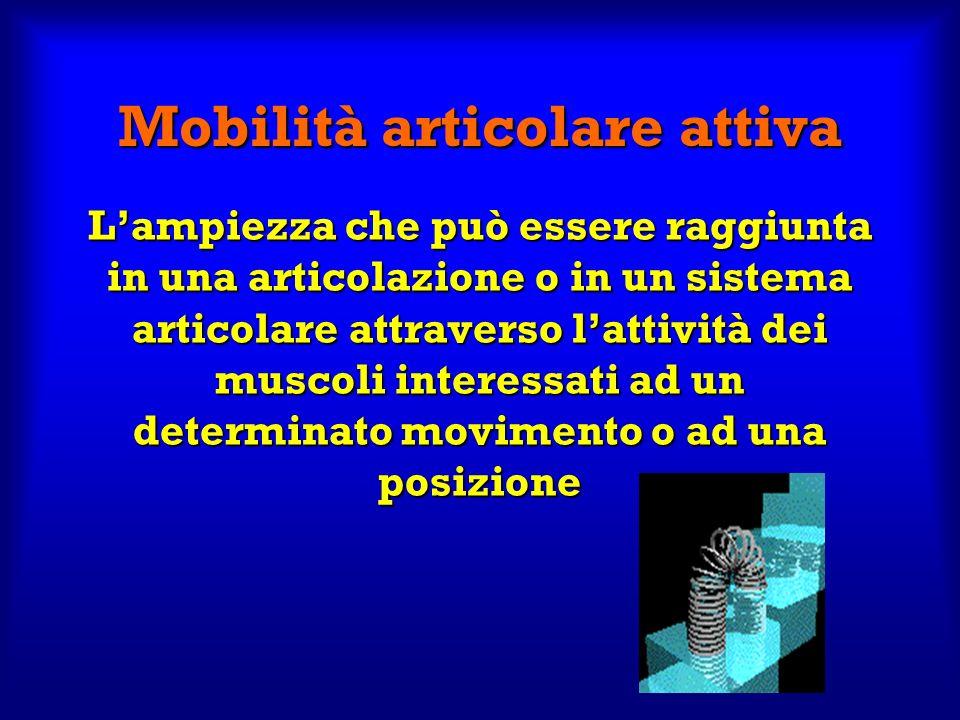 Mobilità articolare attiva