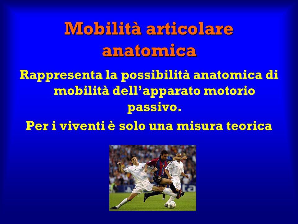 Mobilità articolare anatomica
